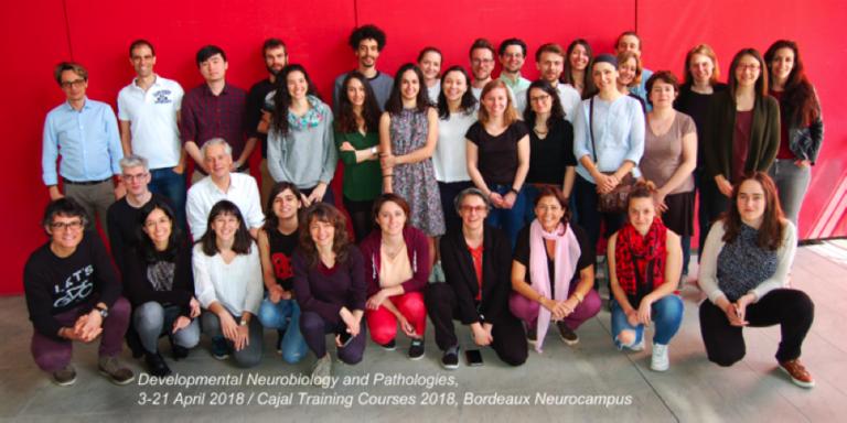 Developmental Neurobiology and Pathologies