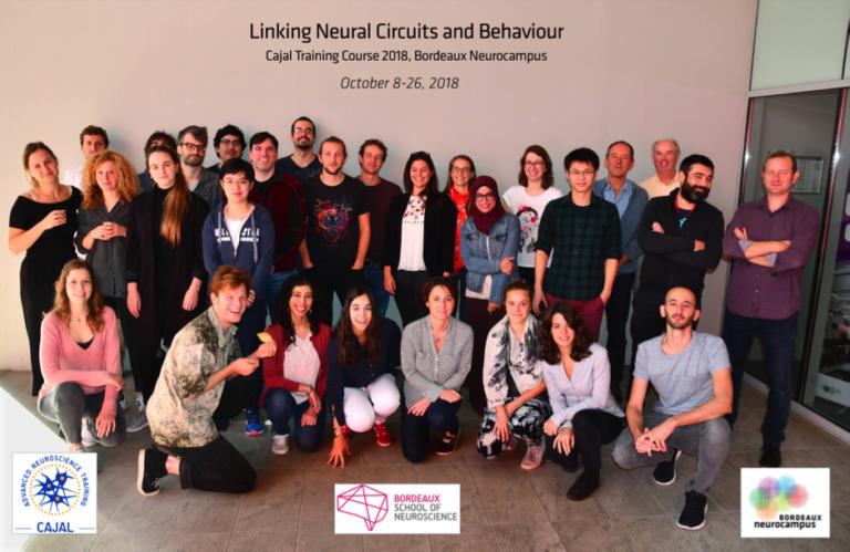 Linking Neural Circuits and Behaviour